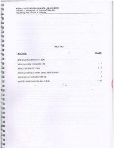 BCTC kiem toan 2014-page-002
