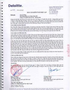 BCTC kiem toan 2014-page-004