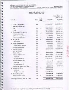 BCTC kiem toan 2014-page-005