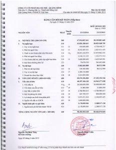 BCTC kiem toan 2014-page-006