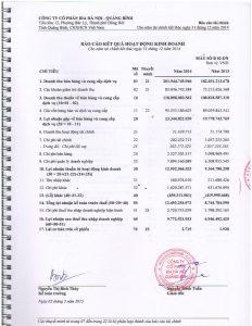BCTC kiem toan 2014-page-007