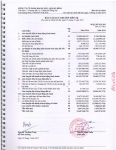 BCTC kiem toan 2014-page-008