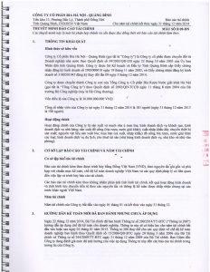 BCTC kiem toan 2014-page-009