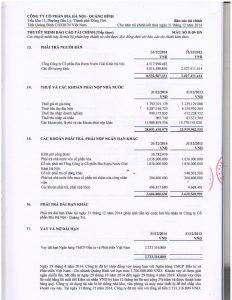 BCTC kiem toan 2014-page-016