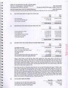 BCTC kiem toan 2014-page-019